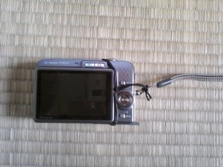 digital camera back.jpg
